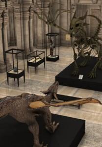 museum-d
