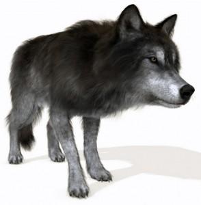 poserwolf